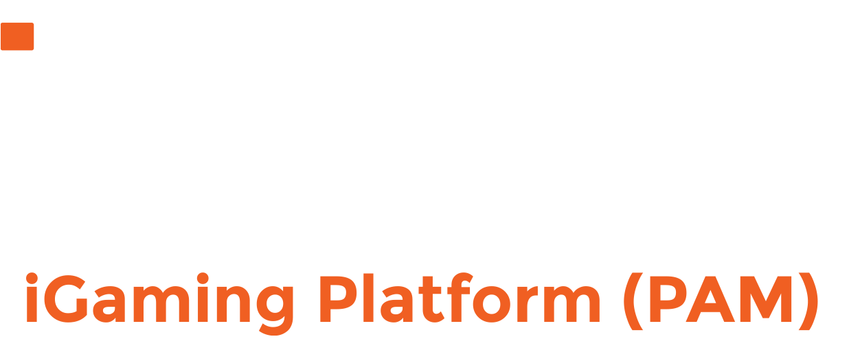 pragmatic-solutions-white-logo